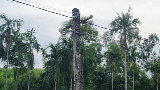 Người dân khốn khổ, cuộc sống đảo lộn vì điện quá yếu tại Nghệ An! - 2