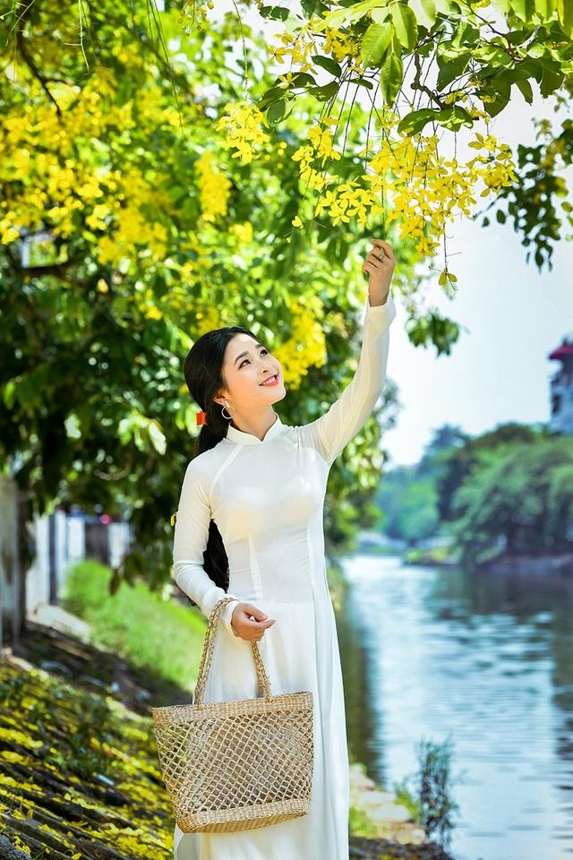 Vẻ đẹp của cô gái xứ Nghệ như tỏa sáng rực rỡ hơn dưới sắc vàng của hoa hoàng yến.