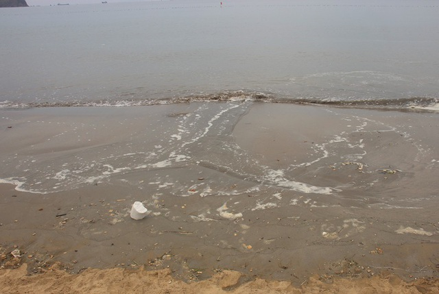 Cát đen, rác thải xuất hiện ở bãi biển Quy Nhơn - 3