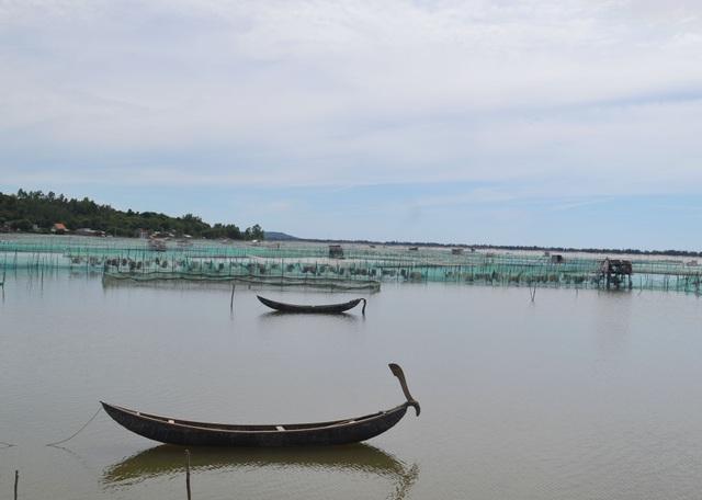 Nhiều hộ chuẩn bị sẵn cọc tre, vải mùng tối đến là ra lấn chiếm khoang vùng để nuôi hải sản
