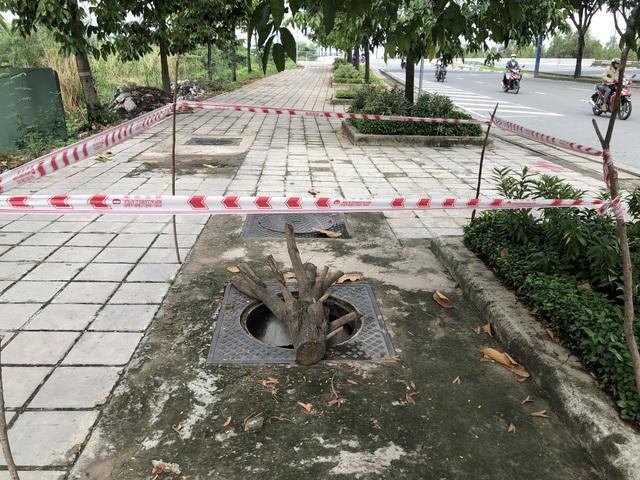 Hàng loạt nắp cống trên đại lộ đẹp nhất Sài Gòn bỗng dưng... mất tích - 7