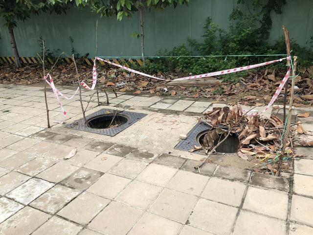 Hàng loạt nắp cống trên đại lộ đẹp nhất Sài Gòn bỗng dưng... mất tích - 6