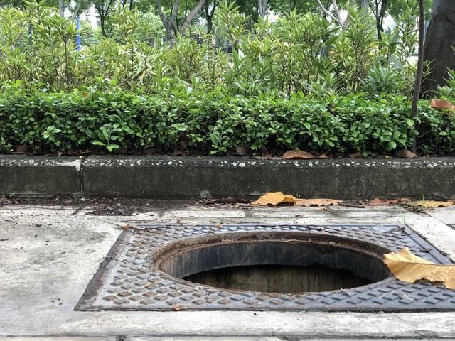 Hàng loạt nắp cống trên đại lộ đẹp nhất Sài Gòn bỗng dưng... mất tích - 3