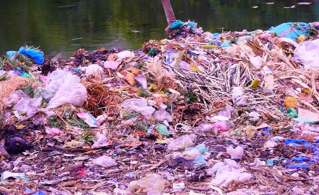 Rác thải ở chợ được đổ ngay xuống bến thuyền.