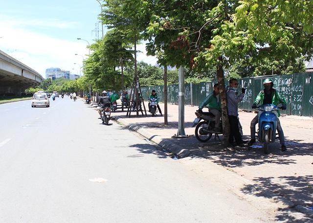 Nhiều tài xế xe ôm dọc tuyến đường Phạm Hùng cố núp mình dưới những tán cây nhỏ bé chờ khách, kiệt sức dưới cái nắng hắt xuống đường chói chang, gắt gỏng.