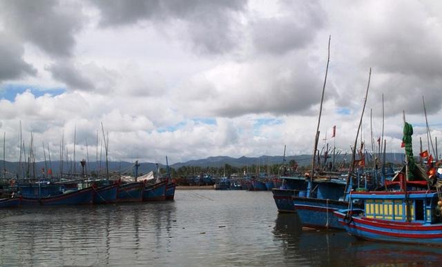 Nhiều tàu cá ngư dân Bình Định còn đang nằm trong vùng ảnh hưởng của áp thấp nhiệt đới.