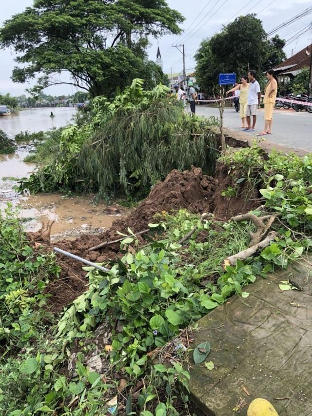 Vụ sạt lở không gây thiệt hại về người và tài sản vì đoạn bờ sông này không có người dân sinh sống (ảnh CTV)