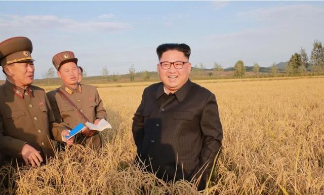 Nhà lãnh đạo Kim Jong-un đi thăm nông trại tại Triều Tiên (Ảnh: AFP)