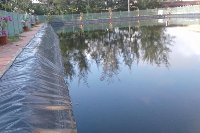 Bể bơi được xây dựng với kinh phí khoảng 150 triệu đồng từ nguồn xã hội hóa nhưng không phát huy hiệu quả