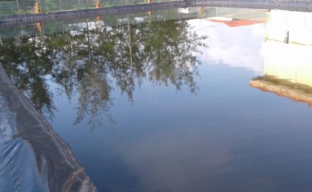 Bể bơi không đảm bảo quy trình và sự an toàn