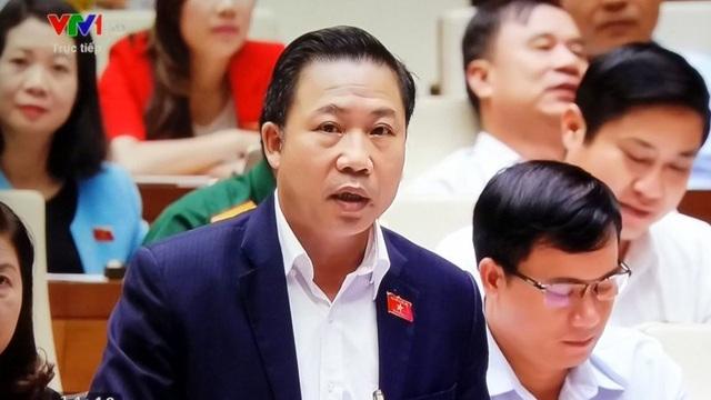 Đại biểu quốc hội Lưu Bình Nhưỡng phát biểu.