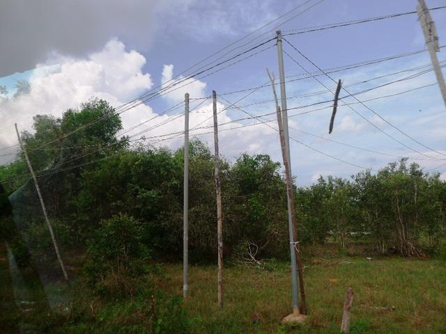 """Rùng mình mạng lưới điện như… """"ma trận"""" ở Phú Quốc! - 2"""