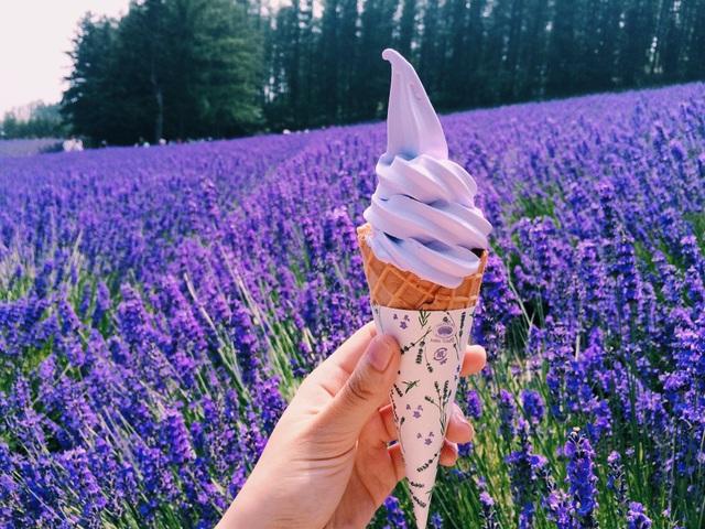 Thị trấn Furano là chốn ghé thăm cho những ai yêu hoa.