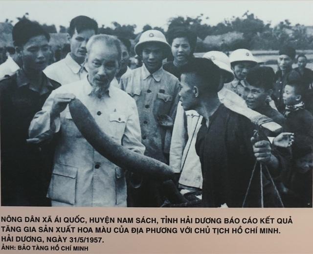 """Khai mạc triển lãm """"Chủ tịch Hồ Chí Minh với phong trào Thi đua yêu nước"""" - 10"""