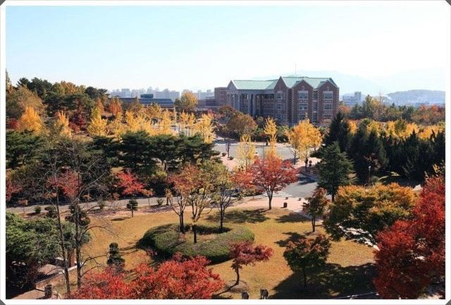 """""""Lạc bước"""" đến ngôi trường tuyệt đẹp xuất hiện trong hơn 100 bộ phim Hàn nổi tiếng - 13"""