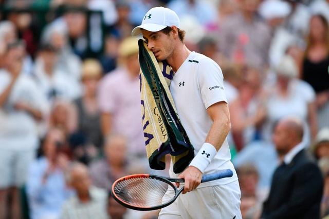Murray chưa thể trở lại ở Wimbledon