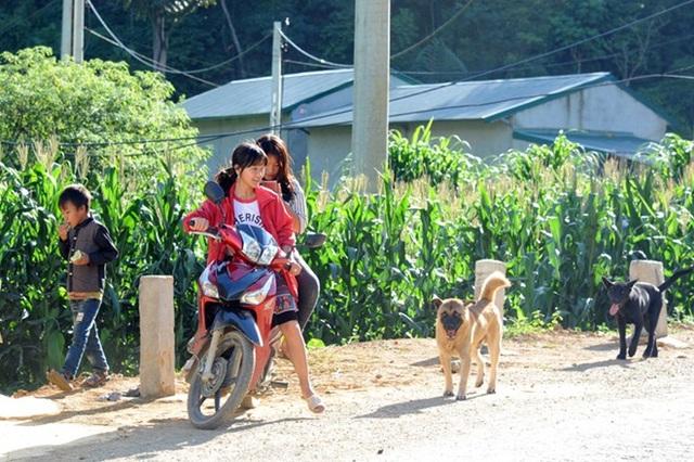 Bản Tà Dê nằm ở thung lũng, bao quanh là rừng núi trùng điệp, và cũng là nơi giáp ranh với điểm nóng ma túy Hang Kia, Pà Cò thuộc tỉnh Hoà Bình.