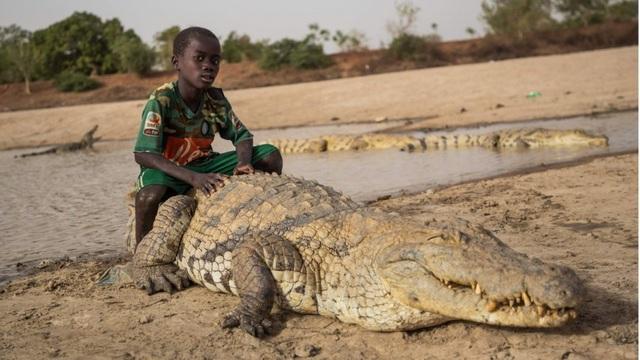 Đến nơi cá sấu sống chung với người, được làm đám tang khi chết - 1