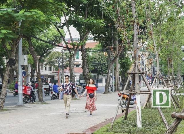 """Chị Vũ Thu Trang – chủ quán cà phê trên đường Thanh Niên chia sẻ: """"Đợt nắng nóng vừa qua đã đốt nóng mọi thứ. Cây phong lá đỏ không phải là ngoại lệ. Đợt mới trồng tôi thấy cây phát triển tươi tốt, lá xanh mượt, nhưng gần đây lá cây bắt đầu có hiện tượng bị suy kiệt."""