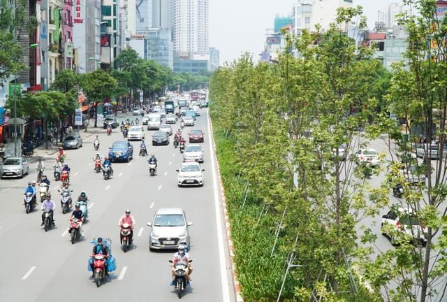 Trái ngược với hàng phong rệu rã trên đường Thanh Niên thì hàng phong trên đường Trần Duy Hưng lại xanh non mơn mởn dưới cái nóng cháy da của mùa hè.