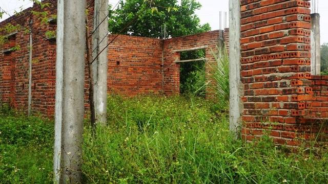 Vì để lâu năm không xây dựng nên cỏ dại mọc um tùm.