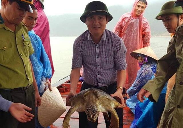 Lực lượng chức năng phối hợp thả con rùa quý về môi trường tự nhiên.