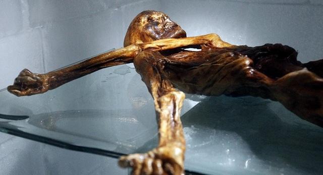 Đã xác định được bữa ăn cuối cùng của thợ săn Alpine 5.300 năm tuổi - 1