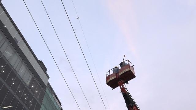 Nhân viên điện lực dùng xe nâng tiếp cận giải cứu chú chim quý hiếm