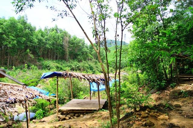 Mát dịu suối Khe Đầy hòa trong núi rừng xanh thẳm - 5