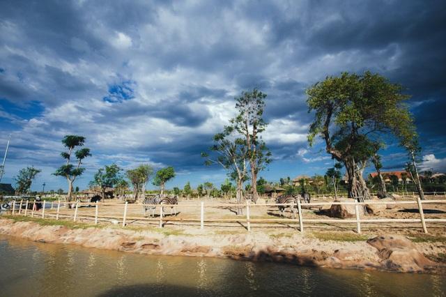 Có gì ở trong River Safari đầu tiên và duy nhất tại Việt Nam? - 7