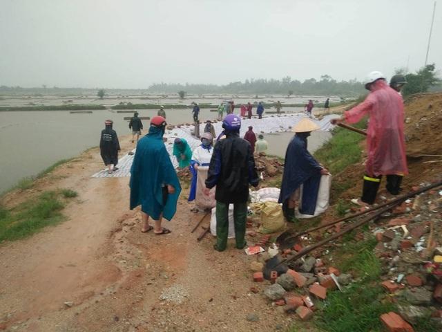 Nga từ 14h chiều, rất đông cán bộ và người dân xã Thạch Châu đã có mặt tại tuyến đê để gia cố lại đoạn đê bị bão số 10 năm 2017 tàn phá.