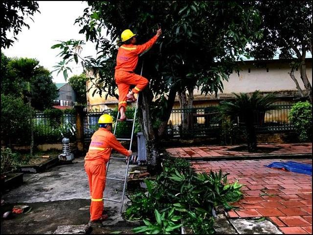 Chuẩn bị phòng chống cơn bão số 3 tại các đơn vị trực thuộc Chi nhánh Lưới điện cao thế Nghệ An (Công ty Lưới điện cao thế miền Bắc - Tổng công ty Điện lực miền Bắc)