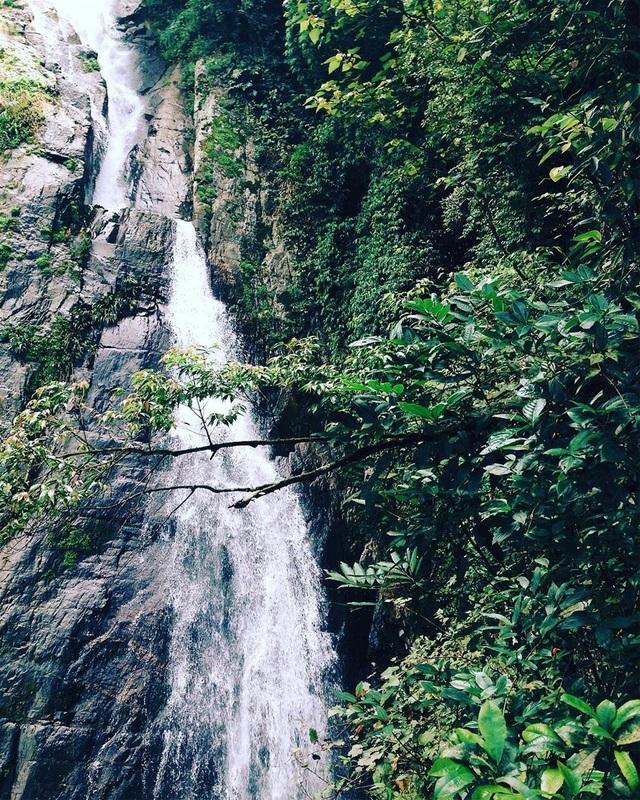 Nằm ẩn mình sâu trong lòng núi rừng, thác Bạc hiện lên thật sinh động với hình ảnh dòng nước nhỏ chảy từ khe núi. @tho_tranggg