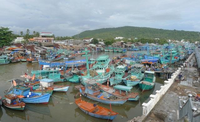 Hiện nay, toàn tỉnh Kiên Giang có gần 10.800 chiếc tàu với tổng công suất hơn 2.785 CV. Thời gian qua, tình trạng tàu cá tỉnh này còn ra nước ngoài đánh bắt trái phép