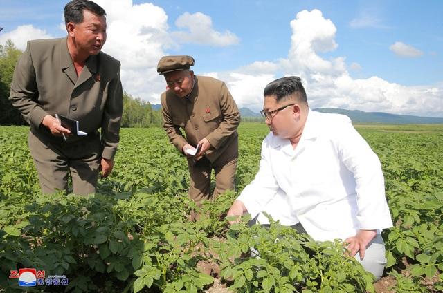 Nhà lãnh đạo Kim Jong-un tới thăm nông trại ở Samjiyon trong tháng 7 (Ảnh: KCNA)