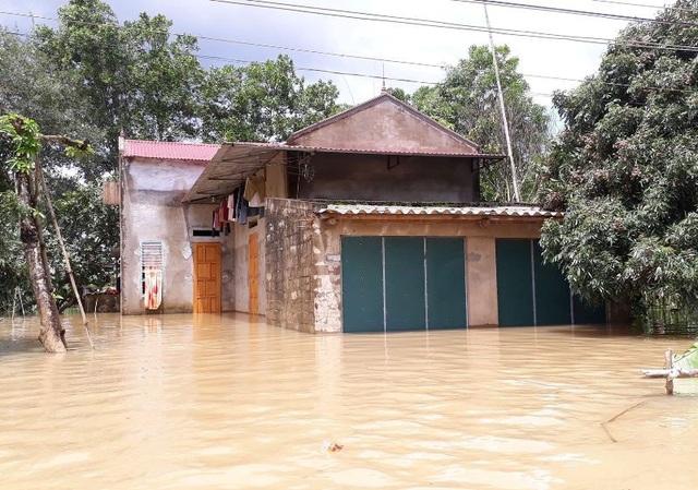 Đến thời điểm này, toàn bộ người dân vùng ngập lụt đã được sơ tán đến nơi an toàn. Theo thống kê của UBND huyện Thạch Thành, tính đến thời điểm 13h chiều 22/7, mực nước sông Bưởi đã lên mức báo động 2 (gần 12m). Với tốc độ nước đang dâng nhanh như hiện nay, dự báo đến cuối giờ chiều cùng ngày, mực nước có thể lên mức báo động 3, nhiều địa phương khác của huyện Thạch Thành sẽ bị ảnh hưởng.