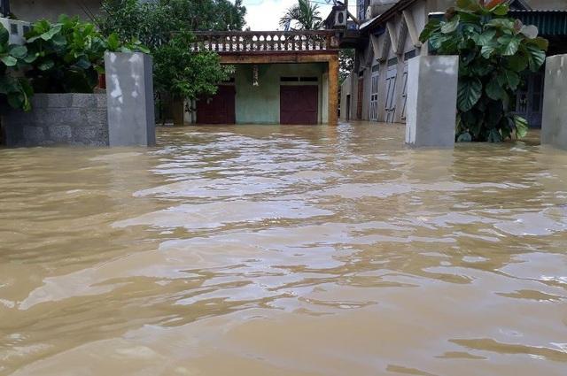 Những ngày qua, trên địa bàn mưa lớn dẫn đến nước đầu nguồn trên sông Bưởi dâng cao, gây ngập lụt tại nhiều địa phương
