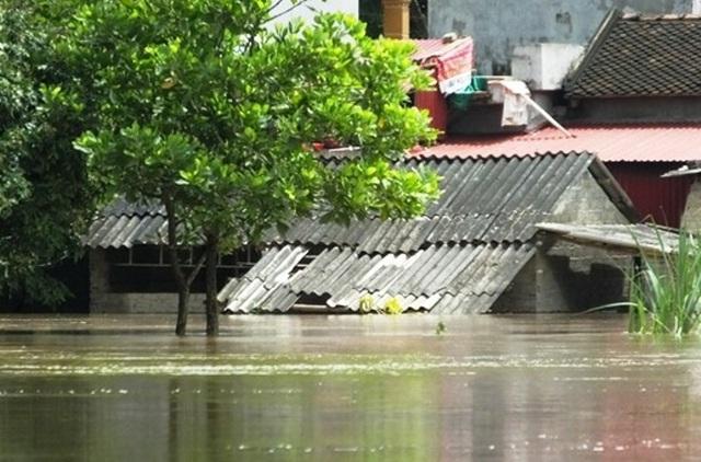 Nước lũ lên nhanh khiến nhiều tài sản của người dân bị nhấn chìm trong nước. Mọi sinh hoạt của nhiều gia đình bị đảo lộn, cô lập, muốn ra bên ngoài chỉ còn cách bơi trong dòng nước lũ hoặc đi bằng thuyền bè mới có thể di chuyển