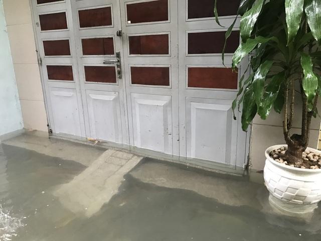 Nước rút là chủ ngôi nhà này, cũng như nhiều nhà khác lại chuẩn bị đồ nghề thau bể ngầm.
