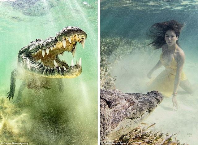 Ken Kiefer đã tìm tới một khu vực có nhiều cá sấu tự nhiên sinh sống và thuê những thợ lặn bản địa hỗ trợ biện pháp an toàn trong lúc chụp hình.