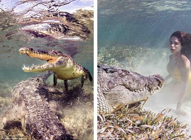 Chiêm ngưỡng bộ ảnh người đẹp bên... cá sấu - 8