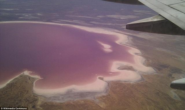 Hồ sa mạc đột nhiên chuyển màu cầu vồng sau trận mưa lũ hiếm gặp - 3