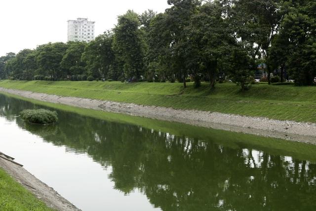 Nước sông Tô Lịch chuyển màu xanh như nước hồ Gươm - 11