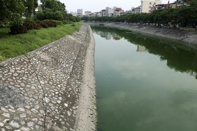 Sau trận lụt lịch sử hồi năm 2008, người dân ở Hà Nội đã được chứng kiến nước sông Tô Lịch trong vắt như xưa. Khi đó, sông Tô Lịch bị nước mưa làm loãng bớt bùn, dâng cao hàng mét, sông Tô Lịch sạch sẽ trở lại trong một thời gian ngắn.