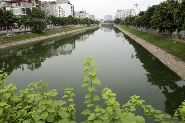 Nước sông Tô Lịch chuyển màu xanh như nước hồ Gươm - 9