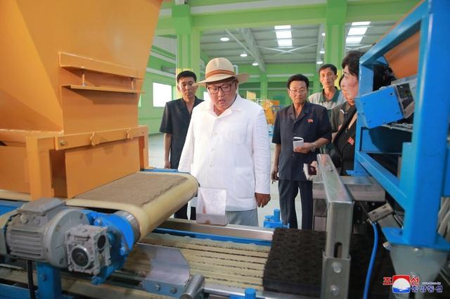Trước đó, nhà lãnh đạo Kim Jong-un từng tới thăm trại ươm cây giống này vào các năm 2015 và 2016.