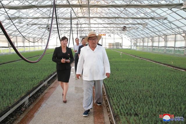 Tháp tùng nhà lãnh đạo Triều Tiên trong chuyến đi lần này là các quan chức cấp cao của đảng Lao động Triều Tiên.