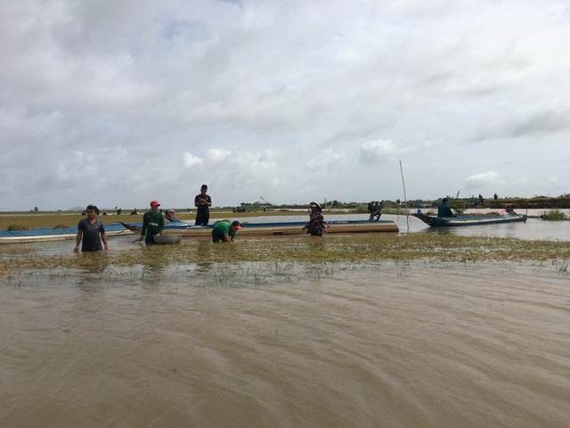 Toàn bộ diện tích lúa bị ngập ở An Giang là những cánh đồng lúa sản xuất ngoài đê bao. Ngành chức năng chỉ khuyến cáo người dân chỉ nên làm 2 vụ...