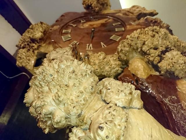 Chiếc đồng hồ mang vẻ đẹp hoang sơ của núi rừng.