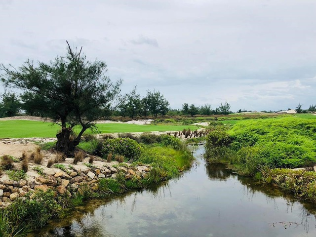 Với vị trí đắc địa và tài thiết kế biến hóa của Brian Curley, FLC Quang Binh Golf Links được kỳ vọng sẽ là điểm đến mới và mang lại những trải nghiệm thú vị cho các golfer cũng như là nơi tổ chức các giải golf tầm cỡ trong nước và quốc tế.